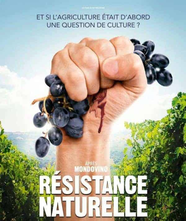 O que é o vinho natural e 8 razões para virar fã incondicional
